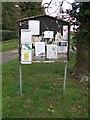 TG0905 : Parish Notice Board by Jeremy Osborne