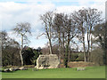 SP9908 : Remains of Semicircular Tower, Berkhamsted Castle by Chris Reynolds