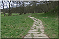 SE6795 : Footpath through Farndale by Pauline E