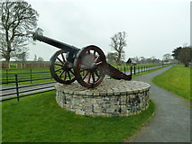 O0475 : Cannon at the entrance and drive to Oldbridge by Graham Hogg