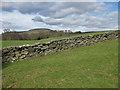 SE6696 : Yorkshire drystone wall by Pauline E