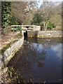 SU8537 : Mill Pond, Barford by Colin Smith