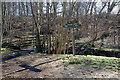 NN9558 : Footbridge over the Kinnaird Burn by Jim Barton