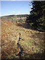 NJ6606 : Downstream Bandodle Burn by Stanley Howe
