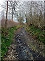 SY5599 : Butts Lane by Hugh Craddock