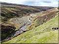 NY9800 : Mill Gill or Old Gang Beck by Christine Johnstone