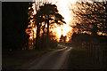 SK8367 : New Lane by Richard Croft