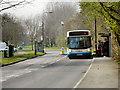SJ7691 : Firs Way by David Dixon