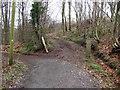 ST2286 : Junction of tracks in Coed Craig-Ruperra by John Light
