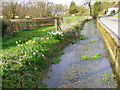 SU0325 : River Ebble, Broad Chalke by Maigheach-gheal