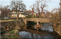 NT2273 : Bridge over the Water of Leith by Anne Burgess