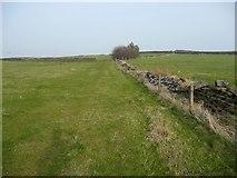 SE0021 : Hebden Royd Footpath 125 by Humphrey Bolton