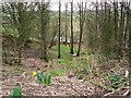 NY5061 : River Irthing below the old churchyard by Rose and Trev Clough