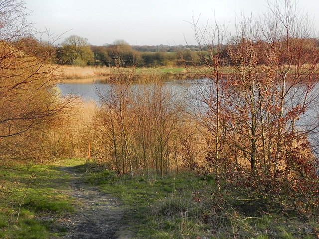 Large Lake, Abram Flashes