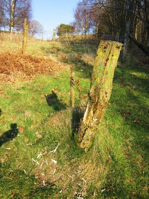 Footpath post marker