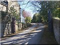SE1426 : Driveway - Rookes Lane by Betty Longbottom