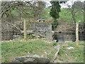 SJ0542 : Bridge remains by the River Dee by M J Richardson