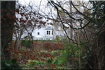 TR1955 : The Old Palace seen through the trees by N Chadwick