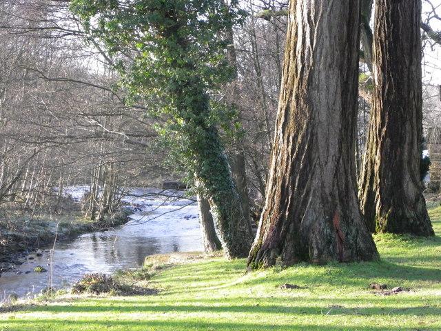 River Dunsop - Dunsop Bridge - Bowland