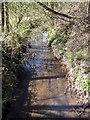 SP0183 : Bourn Brook About to Pass Under West Boulevard by Roy Hughes