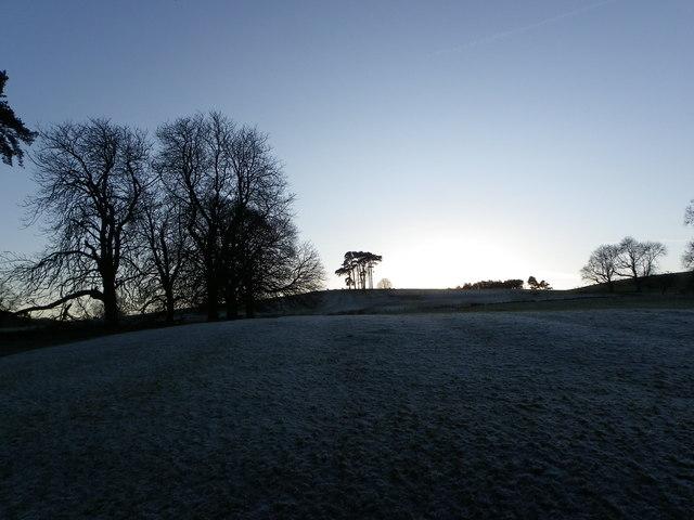 Frosty field towards Hodder Bank Fell [1] - Bowland Forest