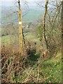 ST3994 : Usk Valley Walk Footpath & Finger Post by richard wyson