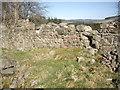 NO5898 : Outside of west wall, ruined Braeside croft by Stanley Howe