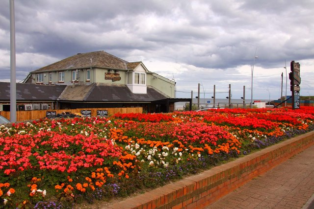 Flowerbeds by the Sand Dancer