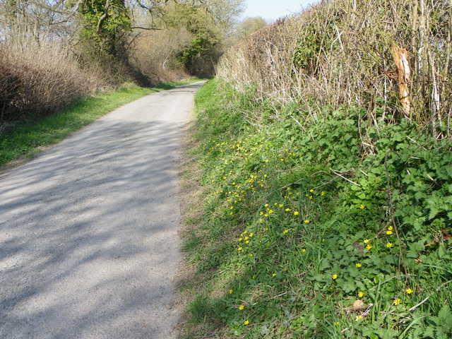 Mill Lane, Bishopstone