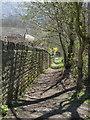 SK3189 : Footpath below Studfield Hill by Alan Murray-Rust