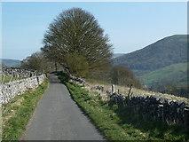 SK1780 : Jeffrey Lane towards Bradwell by Andrew Hill