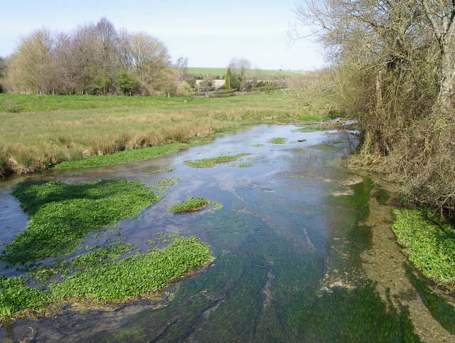 River Ebble, Broad Chalke - (4)
