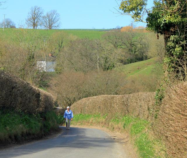 2012 : Uphill from Norton Malreward