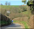 ST5964 : 2012 : Uphill from Norton Malreward by Maurice Pullin