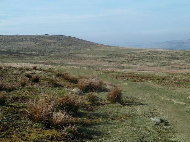 Abney Moor and Bleak Knoll