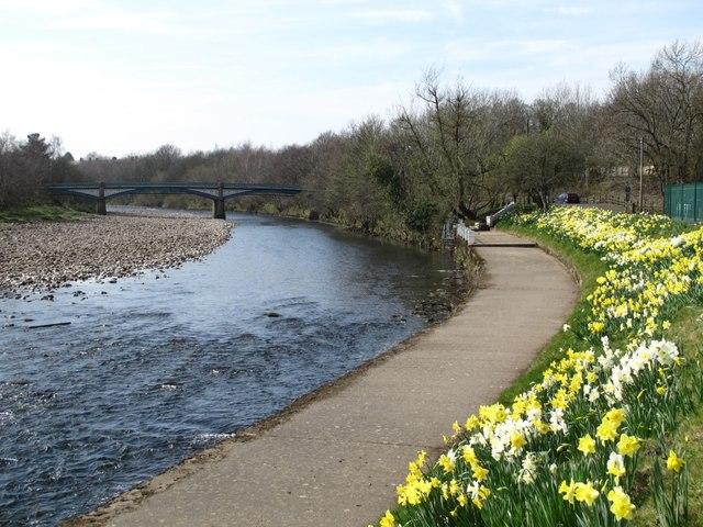The River South Tyne downstream of Tyne Bridge (3)