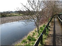 NY7063 : Footpath by The River South Tyne by Mike Quinn