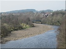 NY7063 : The River South Tyne between Alston Arches Viaduct and Tyne Bridge by Mike Quinn