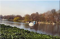 TQ1773 : Boat on River Thames by Paul Gillett