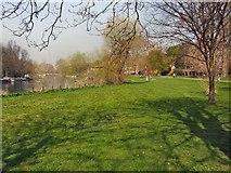 TQ1873 : Buccleuch Gardens, Richmond by Paul Gillett