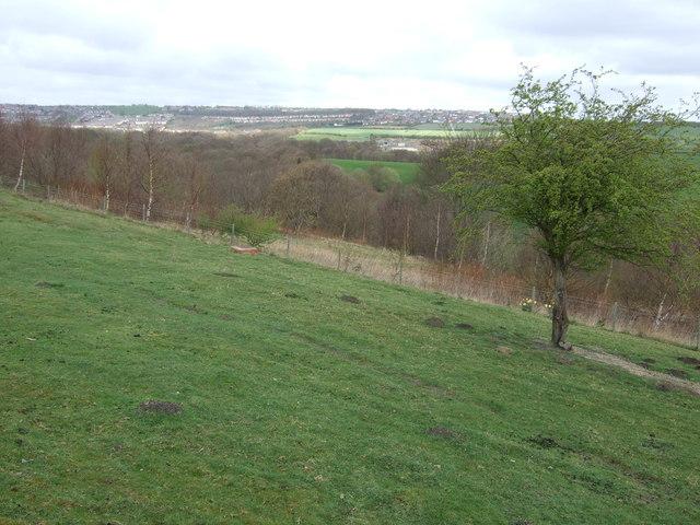 Farmland off Craighead Lane