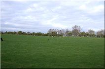 NZ2911 : Grazing land south of Darlington by JThomas