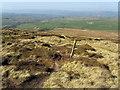 SD9336 : Descending off Boulsworth Hill by Chris Heaton