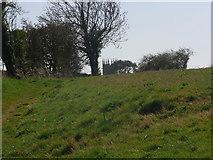 SP1729 : Just seen,  Longborough church in SP 1729 by Liz Stone