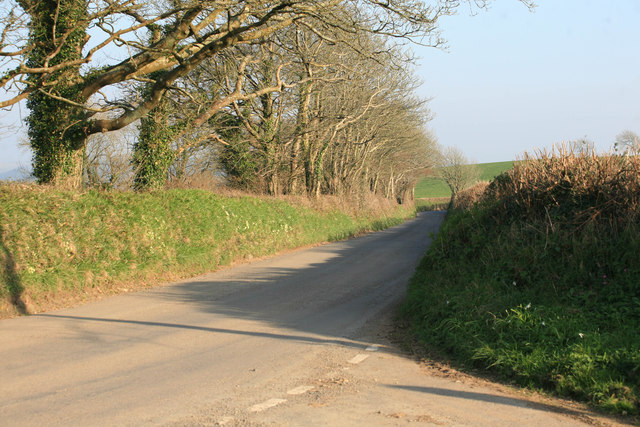 Cornish lane above Hessenford