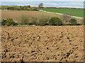NT5672 : East Lothian farmland by M J Richardson