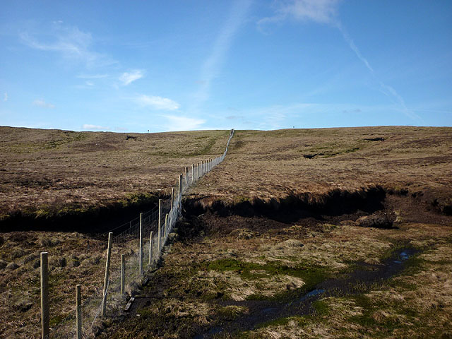 Fence on moorland above Coalgill Sike