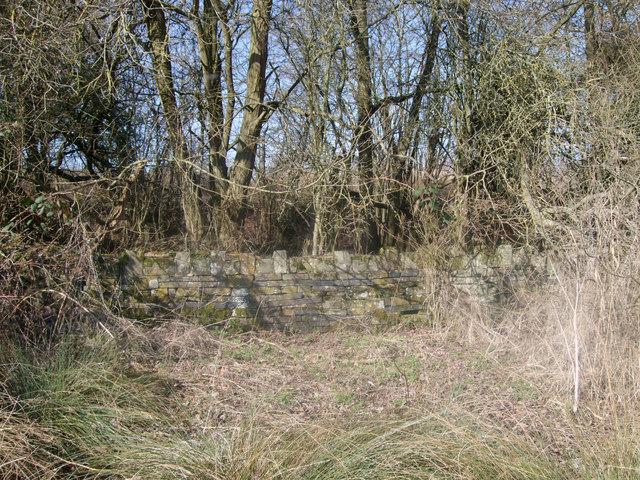 Embankment of disused GWR Highworth branch line