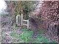 SJ8466 : Footpath in Wornish Nook by Richard Dorrell