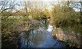 SP4906 : The Bulstake Stream by Des Blenkinsopp